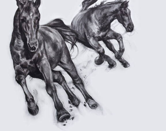 Horses in Motion