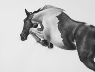 The Great Escape, Charcoal on Fabriano paper, 82cm x 128cm
